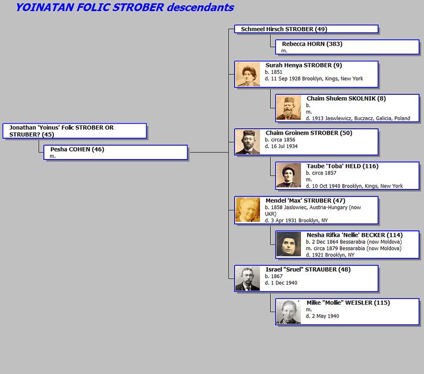 20140821_YOINATAN_FOLIC_STROBER_descendants_VERT